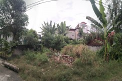 Lot for Sale in Talisay Fairview Village Cebu